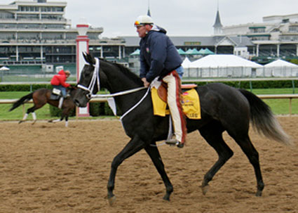 Eight Belles euthanized at Kentucky Derby