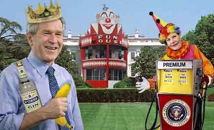 Bush fun house monkey