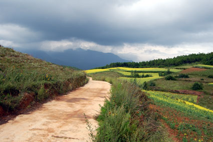 China-Lijiang-road