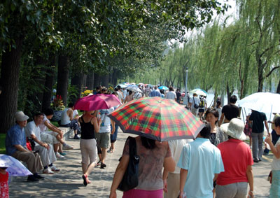 Summer Palace umbrellas