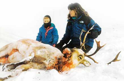 Sarah Palin with caribou kill