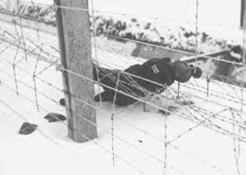 Dachau suicide
